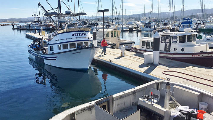 Breakwater Cove Marina in Monterey filming location in Monterey County