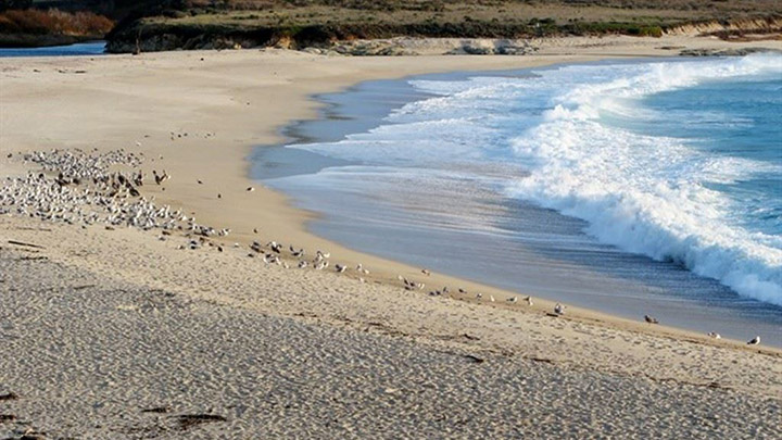 Carmel River State Beach filming location in Monterey County