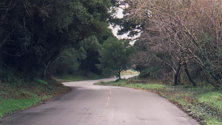 Iris Canyon Road Monterey filming location in Monterey County