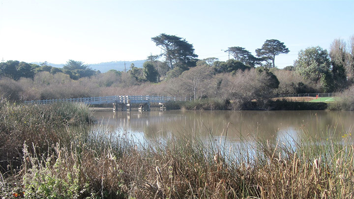 Laguna Grande Park filming location in Monterey County